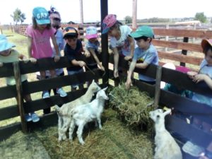 Kinder en La Granja